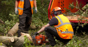 surrey_tree_surgeons_working_chipper