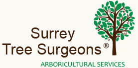 surrey_tree_surgeons_page_logo
